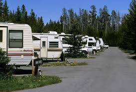RVs camping at Yellowstone
