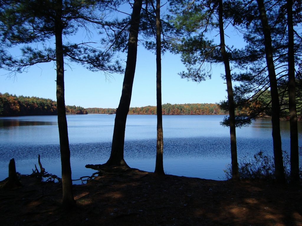 Lake at Myles Standish State Park