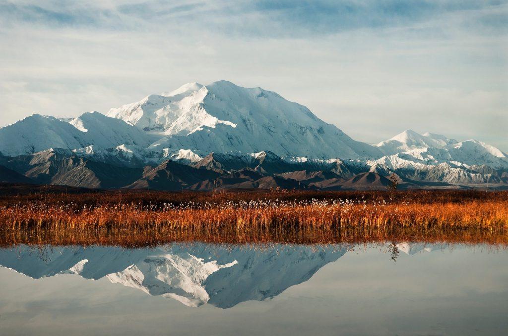 Delali Alaska