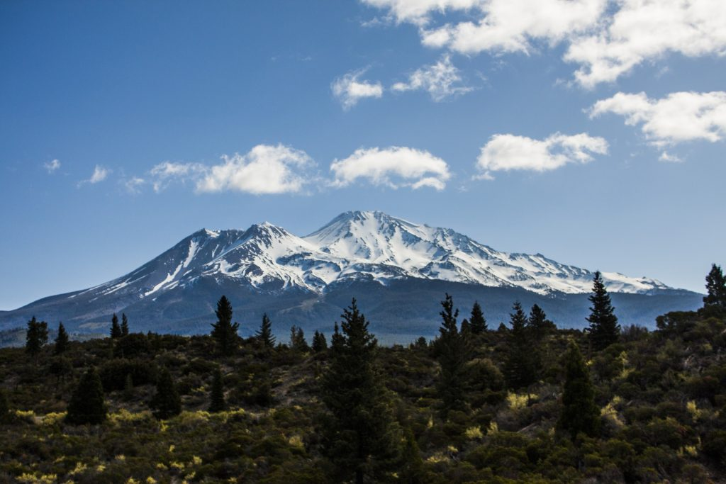 View of Mt Shasta